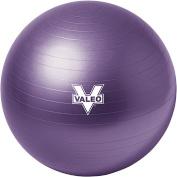 Valeo Burst Resistant Ball, 55cm