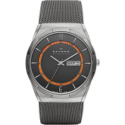 Skagen Grey Mesh Titanium Men's Watch