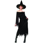 RG Costumes 81333 Velvet Witch Costume