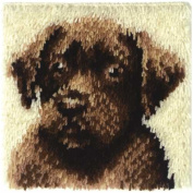 Wonderart Latch Hook Rug Kit, 30.5cm x 30.5cm Chocolate Dog