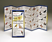Sibleyapos;s Backyard Birds Mid-Atlantic South Central States Book