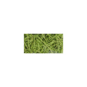Quality Growers QG1596RC Aspenwood Excelsior 328 Cubic Inches-Chartreuse