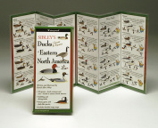 Sibleyapos;s Ducks Eastern North America Book