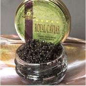 Bemka 12914 14-400gr Royal Siberian Ossetra Caviar - Acipenser Baerri