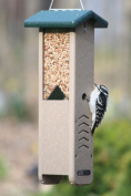 Birds Choice SNWP Recycled Woodpecker Feeder - Green