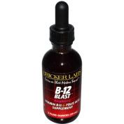 Bricker Labs 0406553 Blast B12 Vitamin B12 and Folic Acid - 2 fl oz