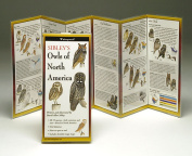 Sibleyapos;s Owls North America Book