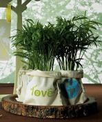 Weddingstar 9070 ECO Mini Drawstring Bag made of 100% Organic Cotton- Green LOVE Print