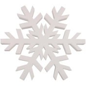 Plasteel Corp RT4918 Smooth Foam Snowflake 12 1/Pkg