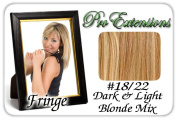 Brybelly Holdings PRFR-1822 No. 18-22 Dark Blonde with Highlights Pro Fringe Clip In Bangs