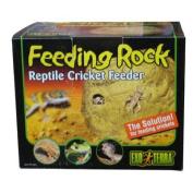 RC Hagen PT2821 Exo Terra Reptile Cricket Feeder