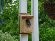 Woodlink Audubon Series Cedar Bluebird House