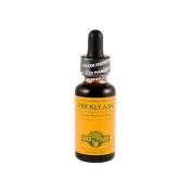 Herb Pharm 0620971 Prickly Ash Liquid Herbal Extract - 30ml