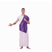RG Costumes 80145 Roman Senator Costume - Size Adult Standard
