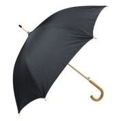 Haas-Jordan by Westcott 4601 Fashion Umbrella Black