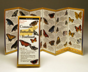Steven M. Lewers& Associates LEWERSBUS101 Common Butterflies Southeast Book