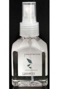 Giovanni Hair Care with Certified Organic Botanicals Shine of the Times Silicone Finishing Mist 120ml Styling Aids 217245
