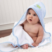 Baby Aspen BA14005BL Finley the Frog Four-Piece Bathtime Gift Set
