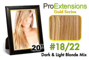 Brybelly Holdings PRCT-20-1822 No. 18-22 Dark Blonde with Light Blonde Highlights