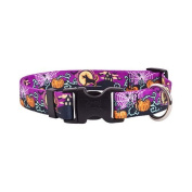 Yellow Dog Design SCN102M Scary Night Standard Collar - Medium