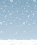 Beistle - 20201 - Winter Sky Backdrop - Pack of 6