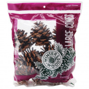 Winter Woods Ponderosa Pine Cones, 8 per pkg, Natural