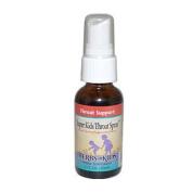 Herbs For Kids 0484485 Super Kids Throat Spray Peppermint - 1 fl oz
