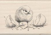Inkadinkado I6000454 Inkadinkado Mounted Rubber Stamp-Chick 4.4cm . x 6.4cm .