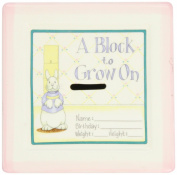 Child to Cherish 15cm ''A Block To Grow On'' - Baby's First Milestones Ceramic Bank