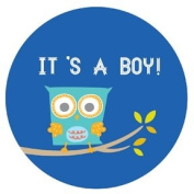 Lucy Darling Shop Pregnancy Belly Sticker - It's a Boy - Blue - Owl