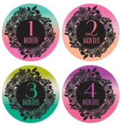 Lucy Darling Shop Baby Monthly Onesie Sticker - Baby Girl - Ombre Design - Months 1-12