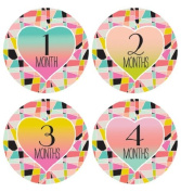 Lucy Darling Shop Baby Monthly Onesie Sticker - Baby Girl - Geometric Design - Months 1-12