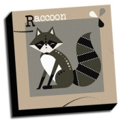 Raccoon - A is For Animals - 41cm x41cm Canvas Baby Wall Art