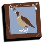 Quail - A is For Animals - 41cm x41cm Canvas Baby Wall Art