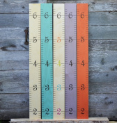 Wooden Ruler Growth Chart - Birch Multi-Colour