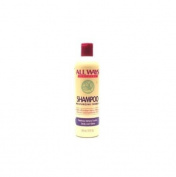 Allways Natural Moisturising Shampoo 350ml