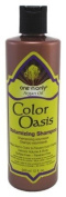 One n' Only Argan Oil Shampoo Colour Oasis Volumizing 355 ml
