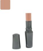 Shiseido The Makeup Stick Foundation SPF15 - B60 Natural Deep Beige - 10g/10ml