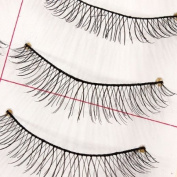 10 Pair Natural Handmade Makeup False Eyelashes Eye Lashes Extension 12 Models