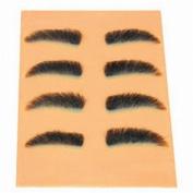 Celebrity Eyebrow Tweezing Pallet