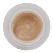 Ceramide Plump Perfect Make-Up SPF15 by Elizabeth Arden #02 Porcelain 30ml