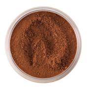 Sleek Makeup Translucent Loose Powder - 287 Dark