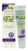 Andalou Naturals Lip Remedy Argan Plus Mint, Argan Plus Mint, 10ml
