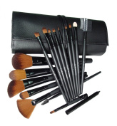 LyDia professional 16 pieces black makeup brush set with black case
