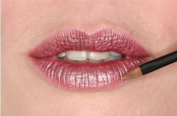 Barbara Hofmann Lip Brush