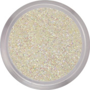 nail perfection 3.5g STILL OF THE NIGHT acrylic nails powder