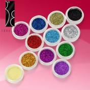 Fräulein3°8 12 Colours Nail Art Glitter Dust Powder Set