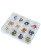 Millennium Nails Nail Art Dried Flowers Kit 12pcs - MILNADFN