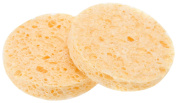 Barbara Hofmann Cleansing Sponges 2-Pack