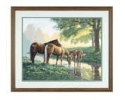"Paint By Number Kit 50cm X16""-Horses By A Stream"